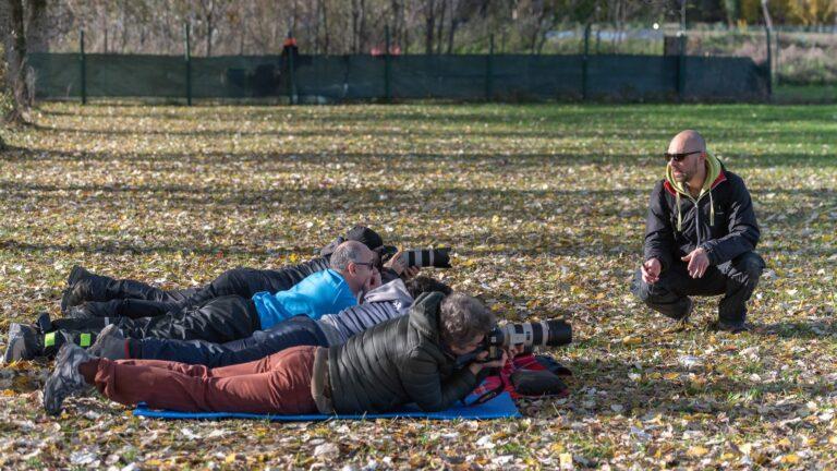 Mattia gorno workshop di fotografia arena a 4 zampe
